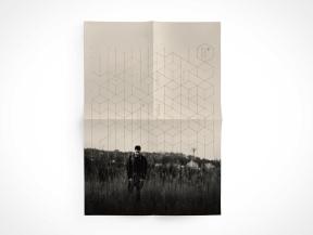 poster 2 web